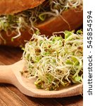 Small photo of Fresh alfalfa and radish sprouts on wooden spoon and baked wholemeal bread roll lying on board, concept of healthy lifestyle diet food and nutrition
