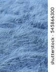 Small photo of Abstract light blue fibers of beach grass, Ammophila, in digitally manipulated micrograph at 100x.