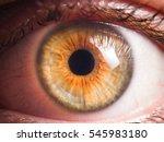 human eye detail | Shutterstock . vector #545983180