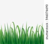 illustration of green grass... | Shutterstock .eps vector #546076690