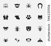 set of 16 editable zoology...