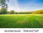landscape of grass field and... | Shutterstock . vector #546162769