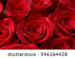 Close Up Of Red Roses And Wate...
