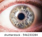 human eye close up | Shutterstock . vector #546233284
