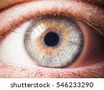 human eye close up | Shutterstock . vector #546233290