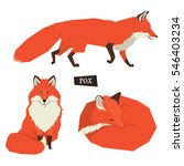 wild animals collection sitting ... | Shutterstock .eps vector #546403234