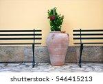 plant  greek amphora  benches... | Shutterstock . vector #546415213
