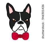 boston terrier bully or french... | Shutterstock .eps vector #546501436