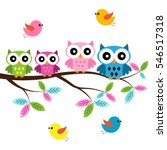 four colorful owls sitting on... | Shutterstock .eps vector #546517318
