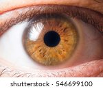 human eye close up | Shutterstock . vector #546699100