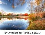 autumn lake burley griffin in... | Shutterstock . vector #546751630