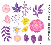 set of decorative delicate... | Shutterstock .eps vector #546789778