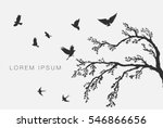 flock of flying birds on tree... | Shutterstock .eps vector #546866656