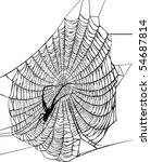 Illustration With Spider Web...