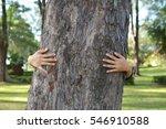 women hug big tree color of... | Shutterstock . vector #546910588