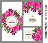 vintage delicate invitation... | Shutterstock . vector #546916639