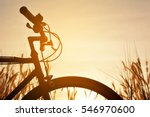 silhouette of bicycle on grass   Shutterstock . vector #546970600