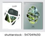 flyer layout template. vector... | Shutterstock .eps vector #547049650
