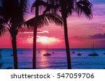 Hawaii Seascape With Palm Tree...