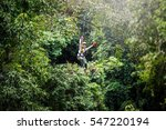 Woman Going On A Jungle Zip...