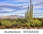 Saguaro And Four Peaks Near...
