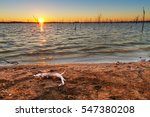 view of sunset at truman lake... | Shutterstock . vector #547380208