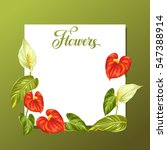 Decorative Frame With Flowers...