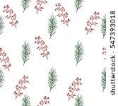 Seamless Pattern With Botanica...