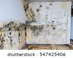 water damage causing mold... | Shutterstock . vector #547425406