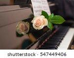 the white rose lying on retro... | Shutterstock . vector #547449406