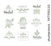 alternative medicine center... | Shutterstock .eps vector #547550110