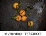 fresh biology tangerines on... | Shutterstock . vector #547635664