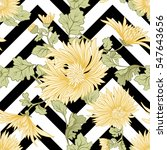 chrysanthemum. seamless pattern ... | Shutterstock .eps vector #547643656