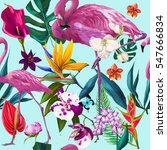 tropical seamless exotic floral ... | Shutterstock . vector #547666834