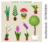 flat vector image. set of home...   Shutterstock .eps vector #547845844