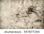 abstract background of old... | Shutterstock . vector #547877254