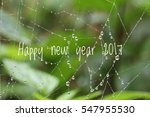 happy new year 2017 word... | Shutterstock . vector #547955530