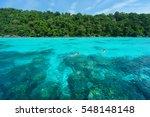 tourist snorkeling in tropical... | Shutterstock . vector #548148148