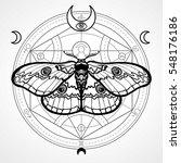 night moth. mystical circle.... | Shutterstock .eps vector #548176186
