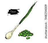 green spring onion set. hand...   Shutterstock .eps vector #548254009