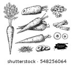 carrot hand drawn vector... | Shutterstock .eps vector #548256064