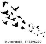 isolated silhouette flocks of... | Shutterstock .eps vector #548396230