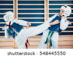 two kids sparing on tae kwon do | Shutterstock . vector #548445550