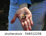 butterfly wings with colored... | Shutterstock . vector #548512258
