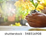 money concept for investment...   Shutterstock . vector #548516908