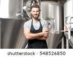a portrait of handsome brewer... | Shutterstock . vector #548526850