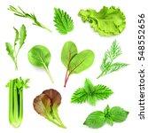 Herbs Set Illustration. Raster...