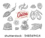 set of engraving cocoa elements ... | Shutterstock .eps vector #548569414