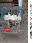 Small photo of HYDERABAD, INDIA - MARCH 11, 2015: man is selling alive chickens outdoor in Hyderabad, India