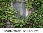 An Old Window Peeking Through...